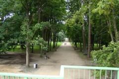 Park-Zwierzyniec-2009-Magia-Polski-3