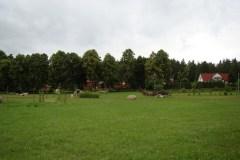 Silvarium-2011-Magia-Polski-12