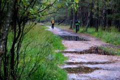 Słowiński-Park-Narodowy-2010-Magia-Polski-11
