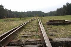Szlak-Powstania-Styczniowego-obok-Arboretum-Magia-Polski-9