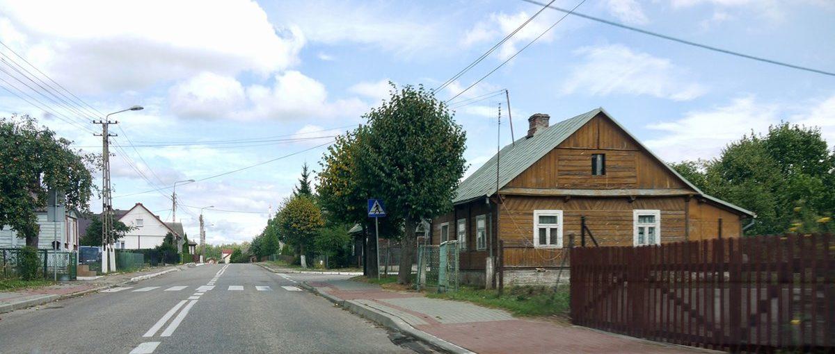 Białowieża 2014