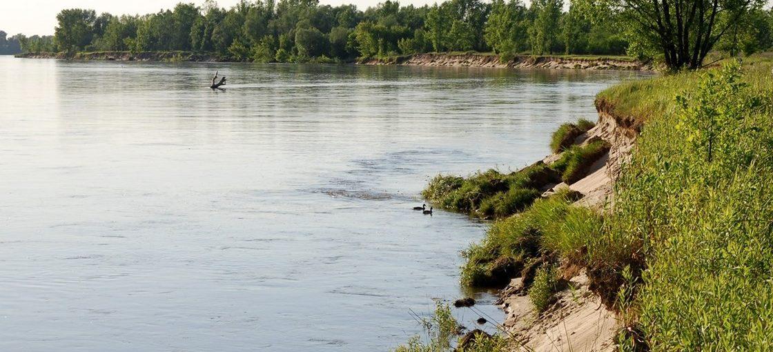 Spacer na rzeką Wisła 2015
